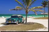 Chevrolet Classic Car under a Palm Tree on the Beach of the Island of Cayo Coco, Cuba Impressão em tela esticada