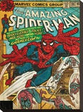 Spider-Man (Chameleon) Stretched Canvas Print