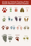 Animal Tracks of the South Western United States Plastic Sign Plastic Sign