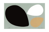 Birth/Black, White and Tan Eggs Giclee Print by Jerry Kott