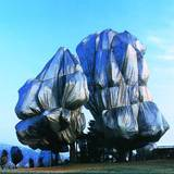 Wrapped Trees Nr. 16 (Riehen) Photographic Print by  Christo