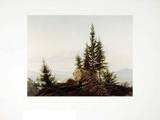 Ausblick ins Elbtal Collectable Print by Caspar David Friedrich