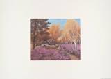 Heidehaus MH580 Collectable Print by Heide Dahl