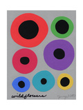 Seven Wildflowers Giclee Print by Jerry Kott