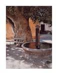 Brunnen und Platane Serigraph by Lutz Münzfeld