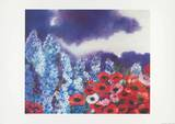 Rittersporn und Mohn HL575 Collectable Print by Heide Dahl