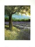 Baum und Lavendel 3063 Serigraph by Lutz Münzfeld