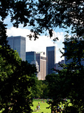Natural Heart Formed by Trees Overlooking Buildings, Central Park in Summer, Manhattan, New York Photographic Print by Philippe Hugonnard