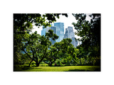 Place for Lovers in Central Park, Manhattan, New York City, White Frame, Full Size Photography Photographic Print by Philippe Hugonnard