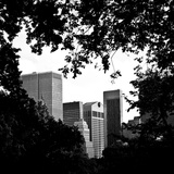 A Natural Heart Formed by Trees Overlooking the Buildings Central Park, Manhattan, New York Photographic Print by Philippe Hugonnard