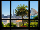 Window View, Special Series, Downtown, Transamerica Pyramid, San Francisco, California, US Photographic Print by Philippe Hugonnard