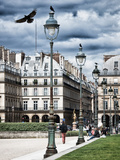 Place Pyramids, Lamps, Palais Royal, Paris, France Photographic Print by Philippe Hugonnard