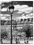 Garden of the Tuileries, the Louvre, Paris, France Photographic Print by Philippe Hugonnard
