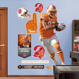 NFL Tampa Bay Buccaneers Vincent Jackson Wall Decal Wall Decal