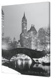 Central Park Stretched Canvas Print