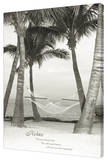 Relax - Palm Tree Stretched Canvas Print