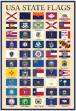 USA 50 State Flags Chart Poster