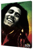 Bob Marley - Paint Stretched Canvas Print