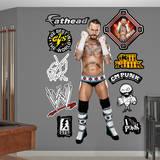 WWE - CM Punk Wall Decal Wall Decal