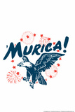Murica! Eagle Snorg Tees Plastic Sign Wall Sign