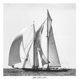 Adrift I Prints by Jorge Llovet