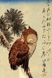 Utagawa Hiroshige Small Brown Owl on a Pine Branch Plastic Sign Kunststof bord