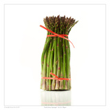 South Jersey Asparagus Art by David Wagner