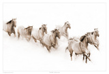 The Herd Prints by Robert Dawson