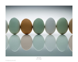 Egg Family Prints by David Wagner