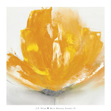Wild Orange Sherbet II Prints by J.P. Prior