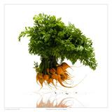 Thumbnail Carrots Prints by David Wagner