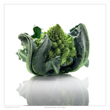 Romanesco Broccoli Posters by David Wagner