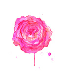 In Full Bloom Giclee Print by Jessica Durrant