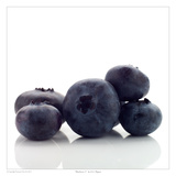 Blueberry 2 Prints by David Wagner