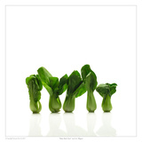Baby Bok Choy Print by David Wagner