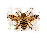 Bee Giclee Print by Teofilo Olivieri