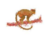 Monkey Giclee Print by Teofilo Olivieri