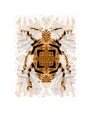 Beetle Giclee Print by Teofilo Olivieri