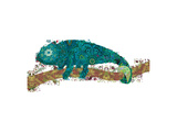 Chameleon Giclee Print by Teofilo Olivieri
