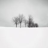 Wintertide Prints by Hakan Strand