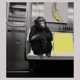 Subway Póster por Jason Laurits
