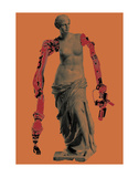 Venus Prints by Jason Laurits