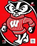 University of Wisconsin Badgers Team Logo Photo