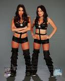 The Bella Twins 2013 Posed Photo
