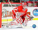 Dominic Hasek Photo
