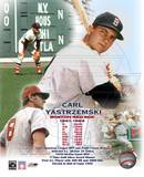Carl Yastrzemski - Legendsof the Game Composite Photo