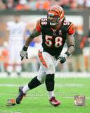 Rey Maualuga 2011 Action Photo