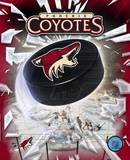 Phoenix Coyotes 2005 - Logo / Puck Photo