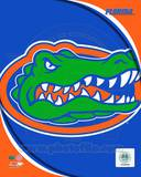 University of Florida Gators Team Logo Photo