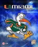 Univ. of Miami Logo Photo